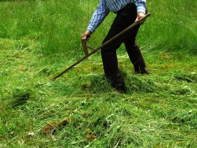 Gartenarbeiter